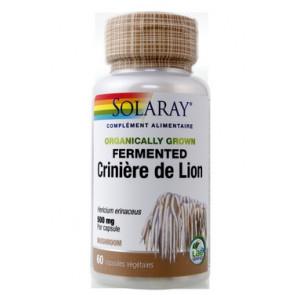 Champignon crinière de lion fermenté 500 mg Solaray