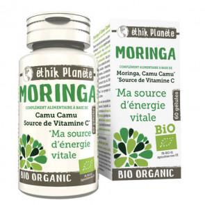 Moringa Bio Energie Ethik Planète