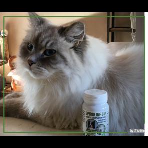 Spiruline Bio pour animaux 60 comprimés