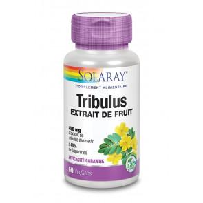 Tribulus standardisé à 40% de saponines Solaray